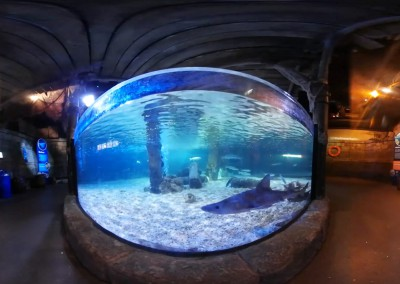 Sea Life – Munchen